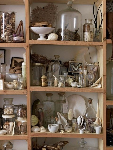 Must organize our nature collection!