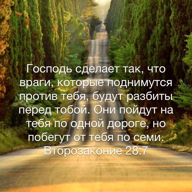 Господь сделает так, что враги, которые поднимутся против тебя, будут разбиты перед тобой. Они пойдут на тебя по одной дороге, но побегут от тебя по семи. (Второзаконие 28:7 RSZ)