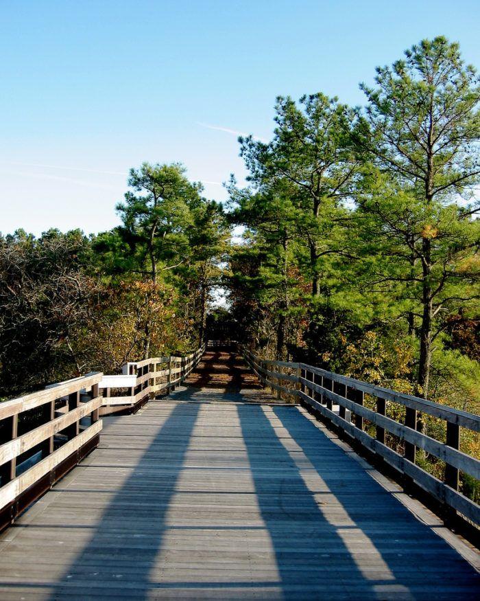 Travel | Delaware | Bucket List | Best of Delaware | Rehoboth Beach | Lewes | Gordon's Pond | Beautiful Hike | Beginner Friendly | Easy Hike | Bike Ride | Delaware Beaches