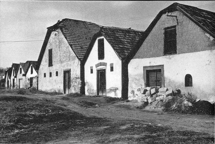 Eger, Verőszala utca 16. -  Farkasvölgyi pincék 1970-es évek