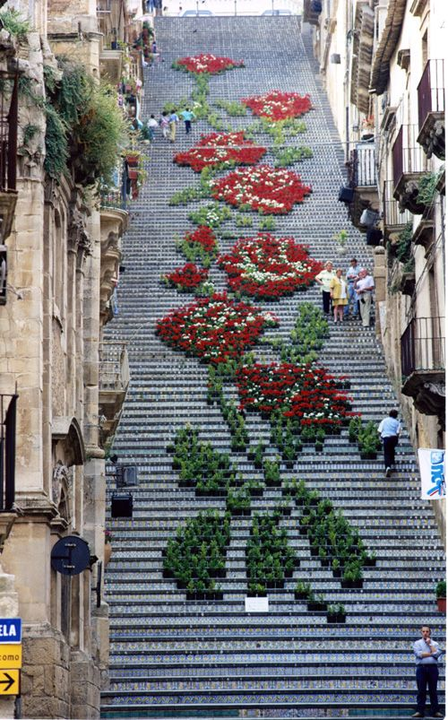 Montepulciano, Tuscany -   Each year, during the La Scala Flower Festival, about 2,000 potted plants and flowers of different shades and colors are arranged on the historic Staircase of Santa Maria del Monte to create one grand design.