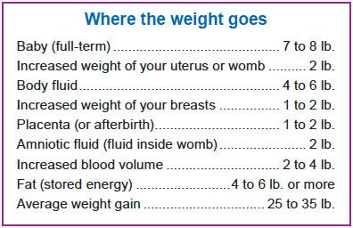 pregnancy trimesters chart weight gain lbs - Google Search