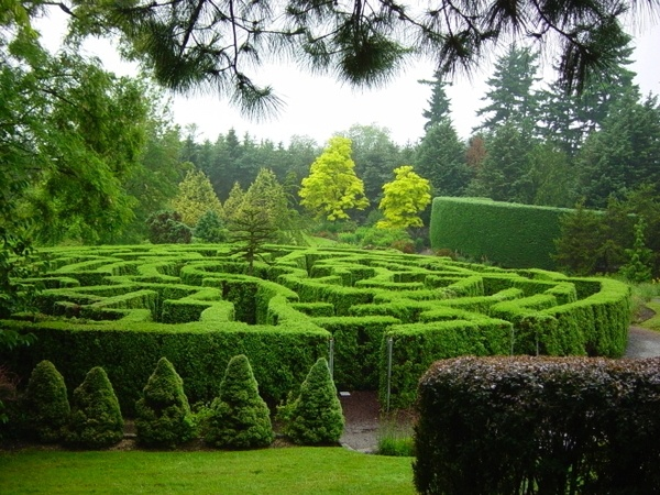 Labyrinth maze garden maze garden design dream for Garden maze designs