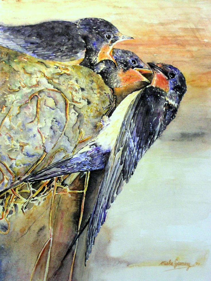 vogeltjes, aquarel