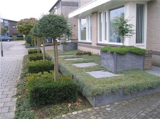 50 best images about voortuin on pinterest gardens for Strakke voortuin