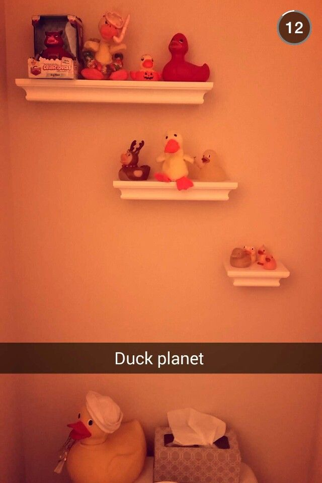 This is my bathroom #proud #duckies4life