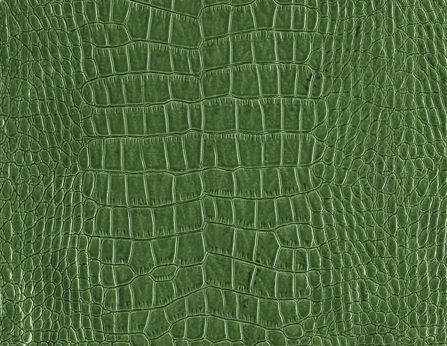This Is A High Resolution Picture Of Leather Texture Featuring Crocodile Skin In Green Color That You Can Use Your And Designs