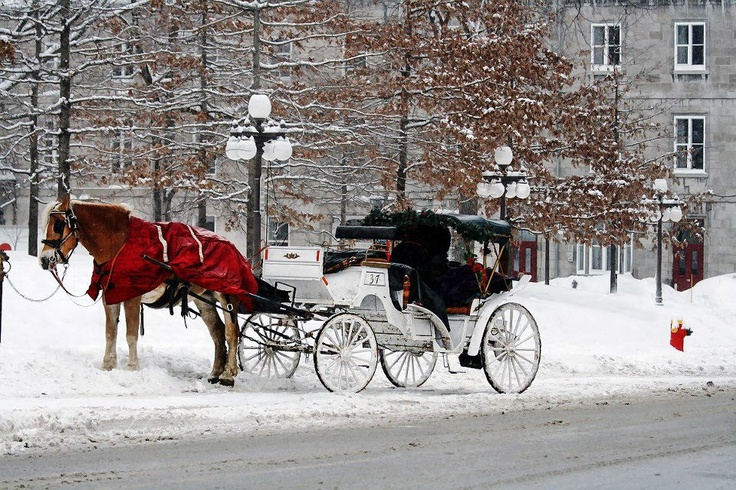 pin snow ride carriage - photo #17