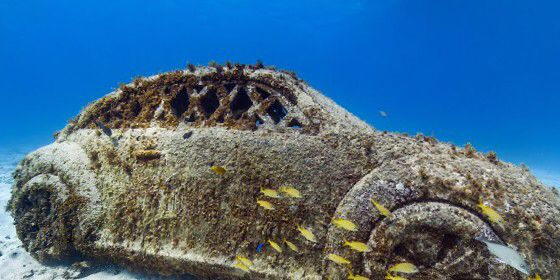 Check out The Underwater Museum of Isla Mujeres, Mexico on #StreetView