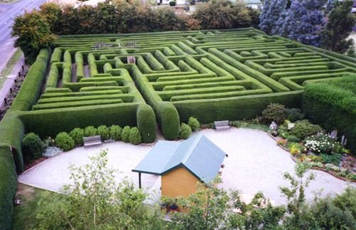Westbury Maze and Tea Room
