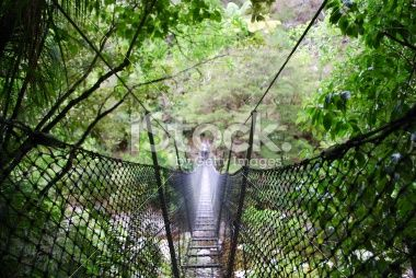 Swinging Rope Bridge, Abel Tasman National Park, NZ Royalty Free Stock Photo
