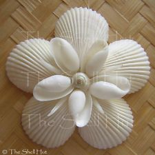 Seashell Snowflake Christmas Ornament Star Shell Flower Tropical Beach Nautical