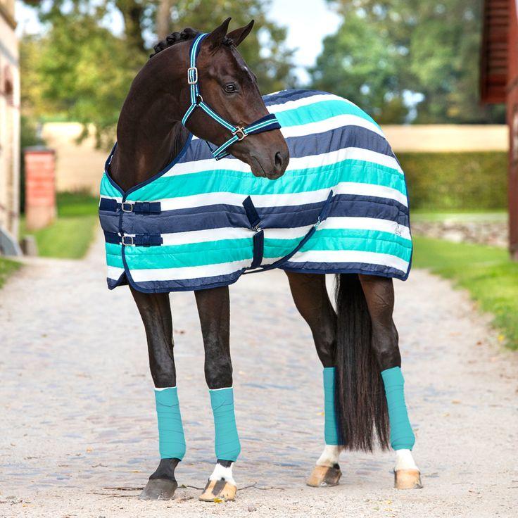 25+ Best Horse Tack Ideas On Pinterest
