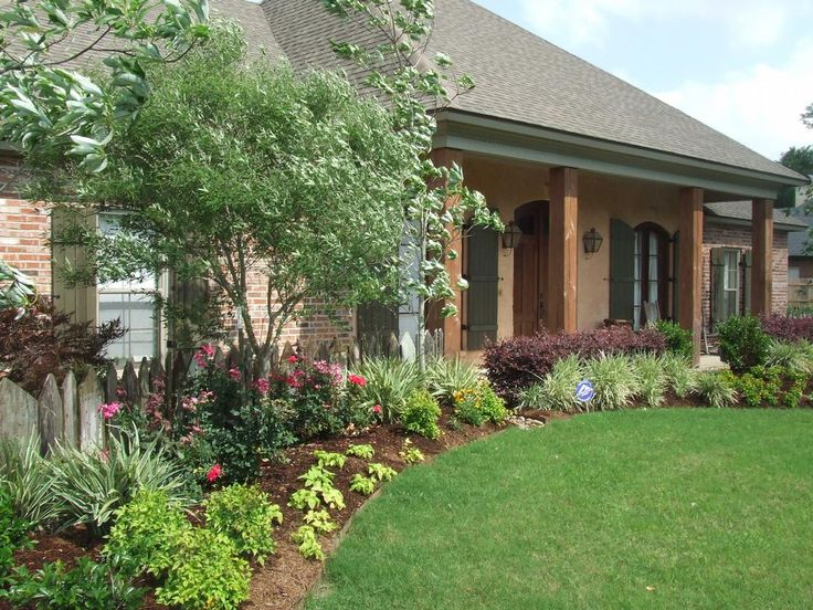 57 best images about garden berm ideas on pinterest for Landscaping plants south carolina