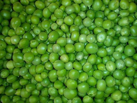 Консервируем зелёный горошек. Самый лёгкий способ - YouTube