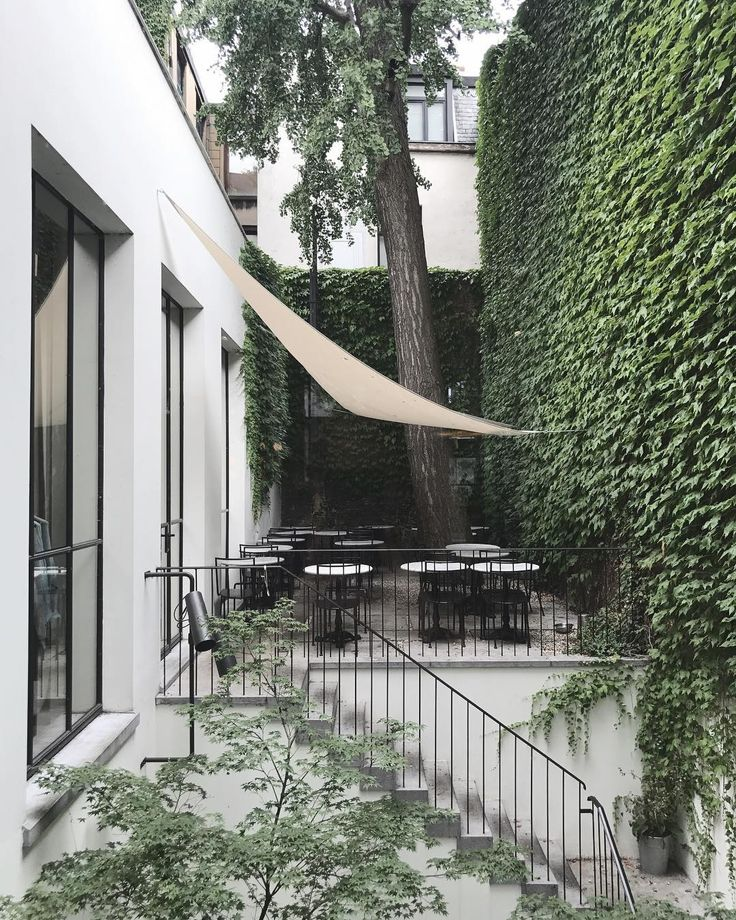 Exceptional Vine Covered Wall, Shade Sail For Privacy.