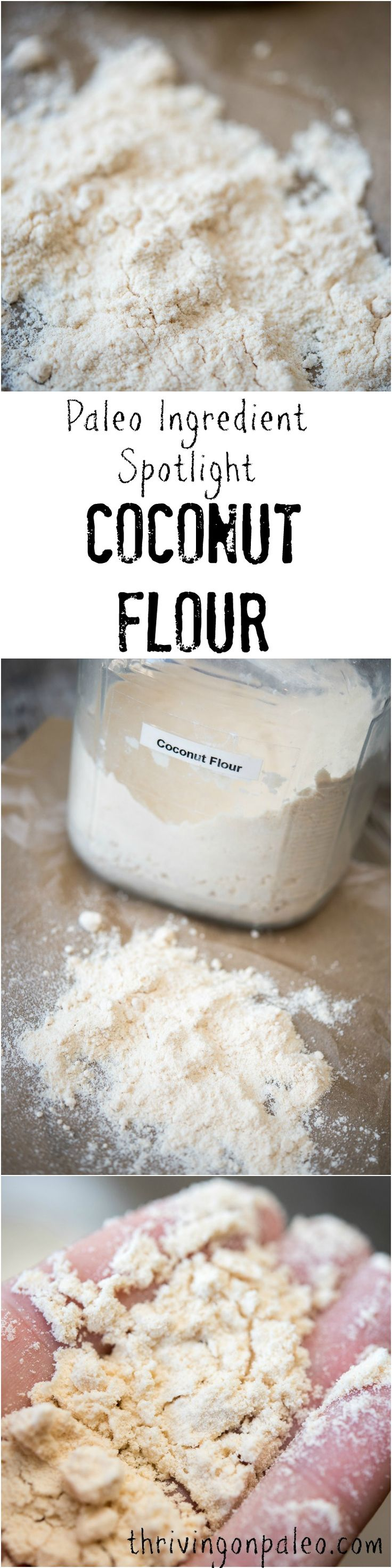 Paleo Ingredient Spotlight: Coconut Flour by Thriving On Paleo. What is coconut flour and what can it be used for?