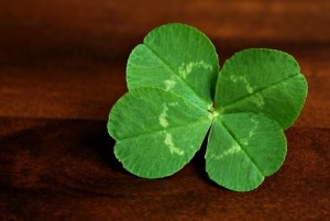 Will your #smallbusiness be celebrating St. Patrick's Day?