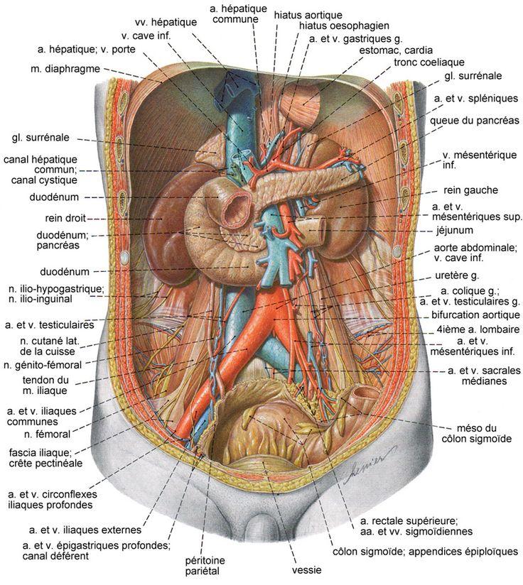 La respiration et osteokhondroza