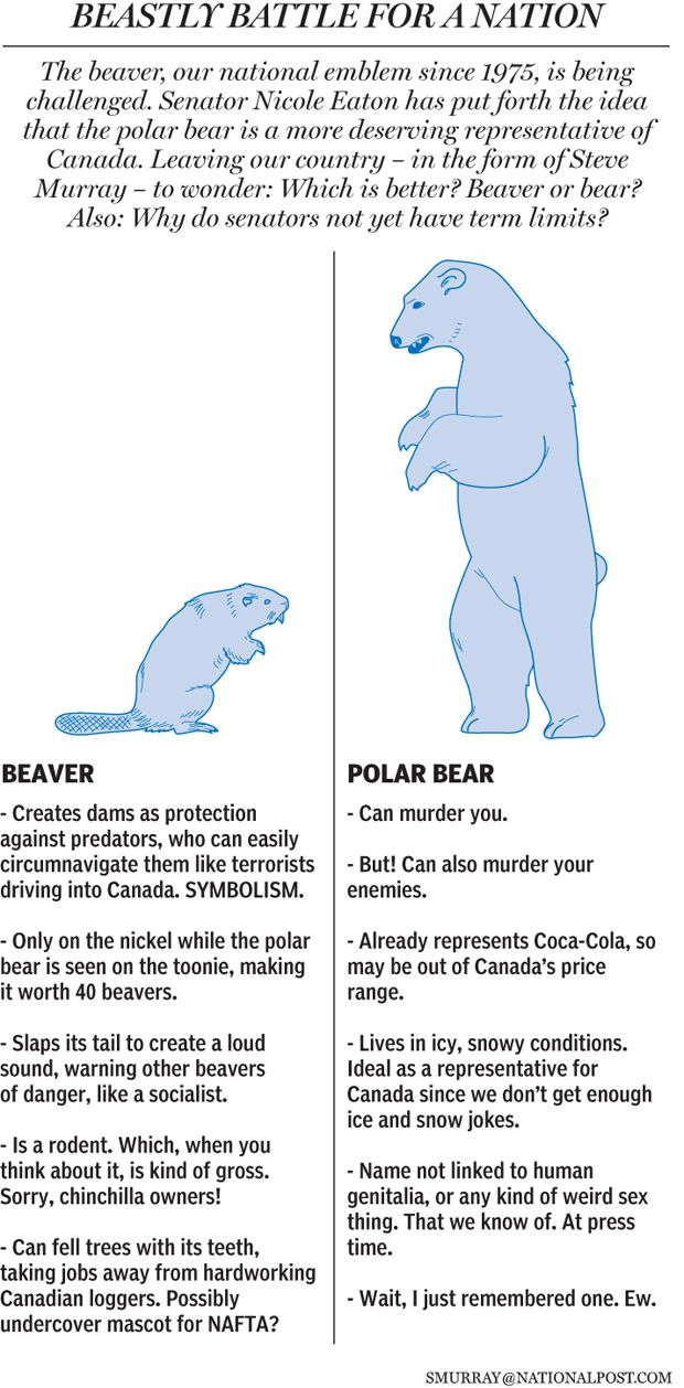 Beaver vs. Polar Bear as Canada's National Symbol | graphic by by Steve Murray, National Post | read more here http://www2.macleans.ca/2011/11/04/beaver-be-dammed/ - Obviously this chart's just for laughs; the actual reason for the beaver's being our national animal is the significant role that the trade in beaver fur had in Canada's early economy and history.