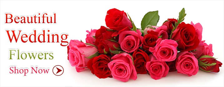 Order & Send Flowers Online