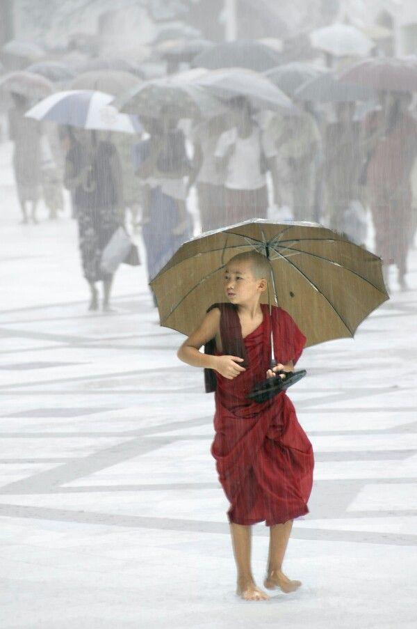 68 Best It's Raining It's Pouring Images On Pinterest