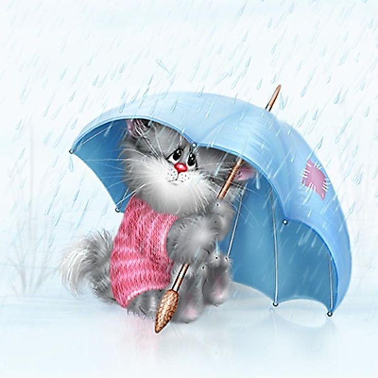 Gatito triste bajo lluvia