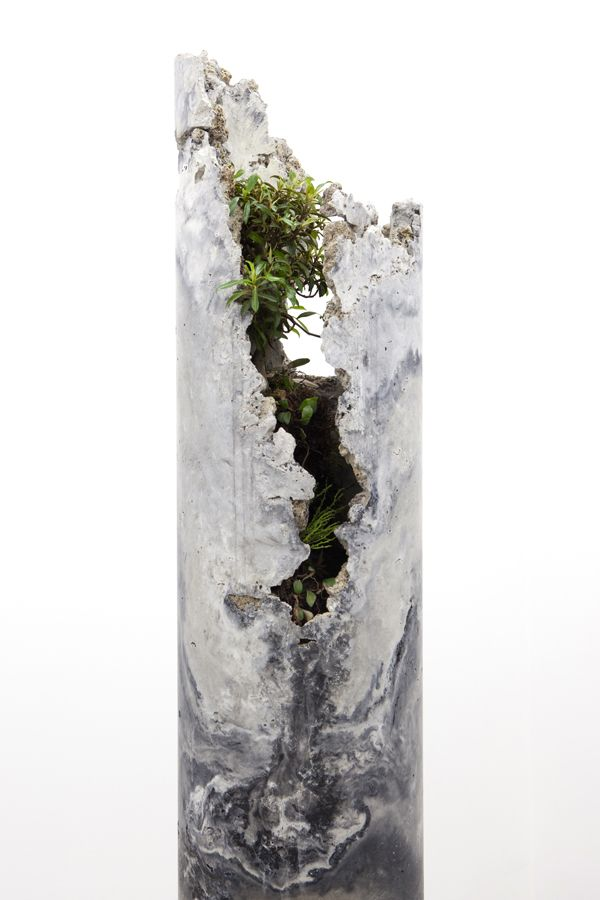 Jamie North Innerouter, Flume 2013 fibre reinforced concrete (portland cement, coal ash, steel slag, iron oxide), plant species include; Ficus rubiginosa (Port Jackson Fig) and Pyrrosia rupestris (Rock Felt Fern), Psilotum nudum (Fork Fern)