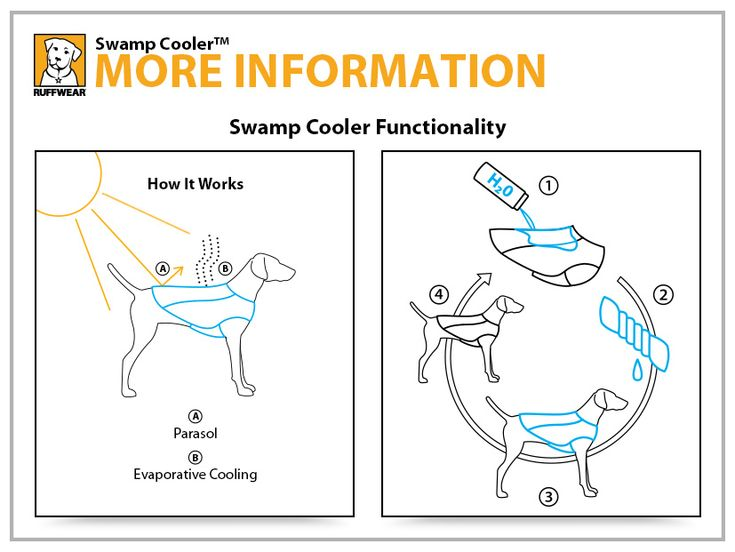 Ruffwear Swamp Cooler™ Dog Cooling Vest - Help your dog beat the heat with this innovative cooling vest.  Just soak it in cold water, wring it out, and fasten around your dog. Evaporative cooling (like an actual swamp cooler) exchanges the dog's heat with the coolness of the stored water in the coat to keep them comfortable and ready to run that extra mile.