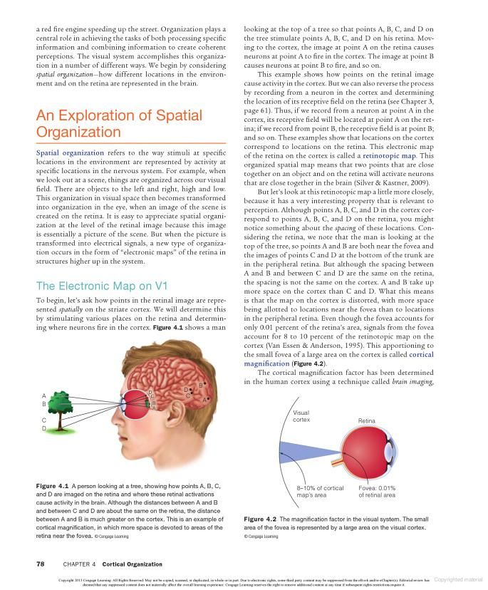 how death can affect perception of Although preserving life is a central goal of medicine, in the end, death is an unavoidable outcome professionals in palliative and hospice care, working within the landscape of death and dying, are able to provide insight into death-related experiences and have the opportunity to incorporate these experiences into their personal and professional lives.