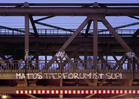 http://www.matos-tierforum.com