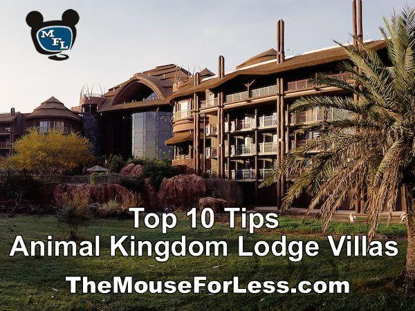 1000 Images About Animal Kingdom Villas On Pinterest
