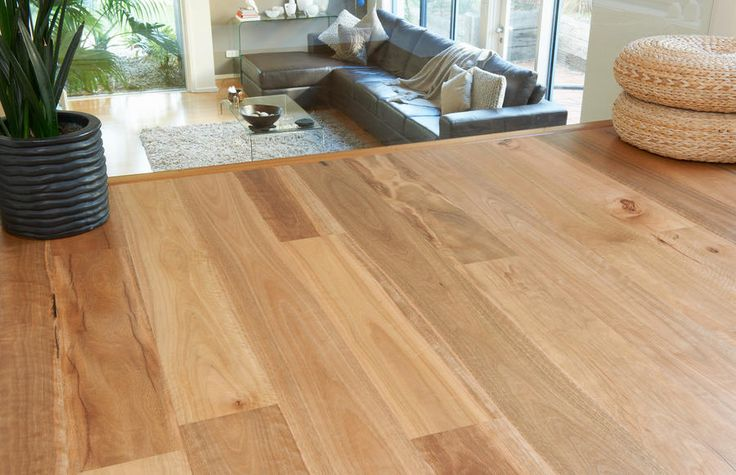 Spotted Gum 185mm Floating Floors