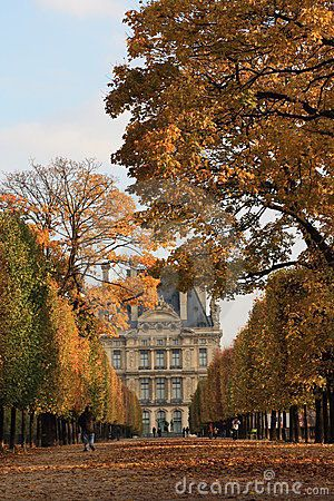 Autumn dream in Paris ~ the Louvre, France