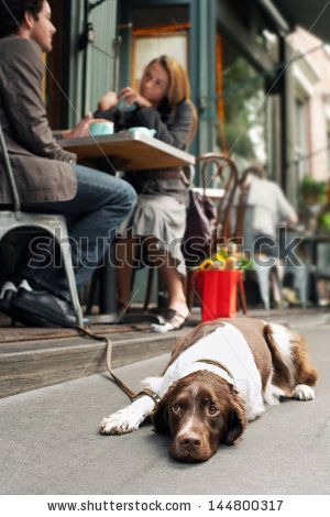 Blurred young couple at cafe with dog resting on sidewalk - stock photo