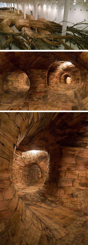 tree cavern...