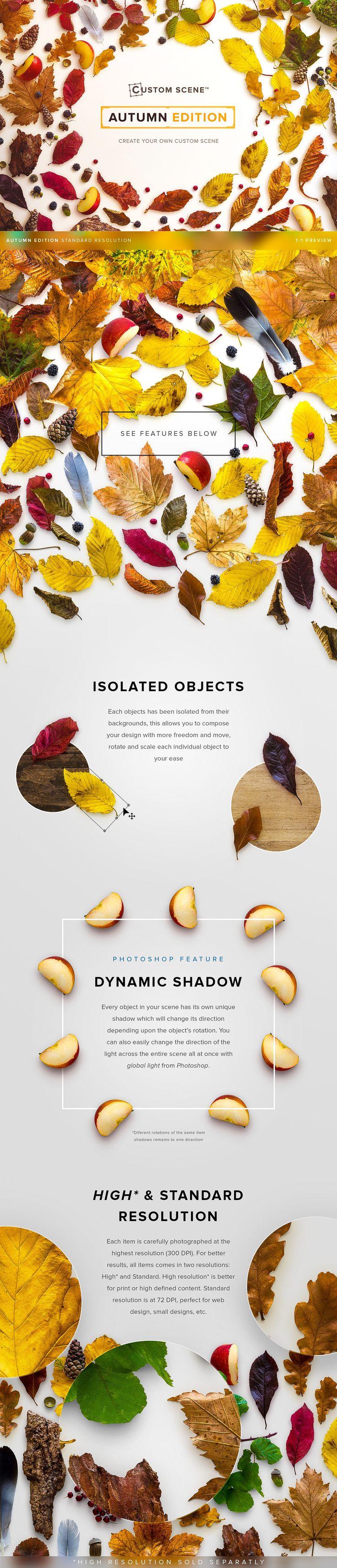 -50% Autumn Edition - Custom Scene by Román Jusdado on @creativemarket
