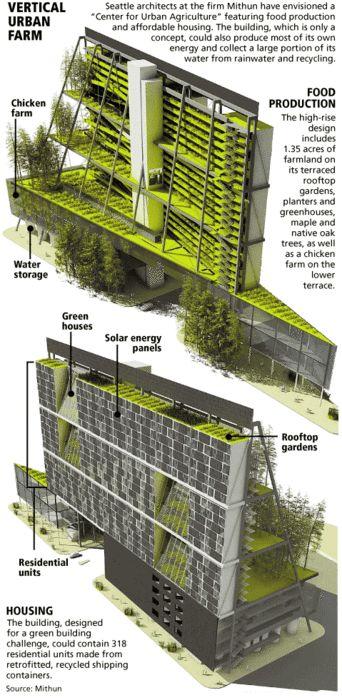 83 best Vertical garden design images on Pinterest Vertical