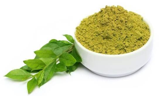 #Henna leaves are beneficial in the treatment of prickly heat. The leaves ground with water are applied over the affected area.