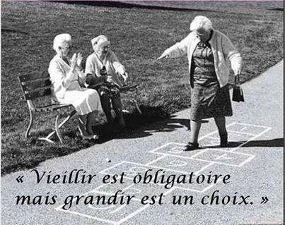 #quote #citation