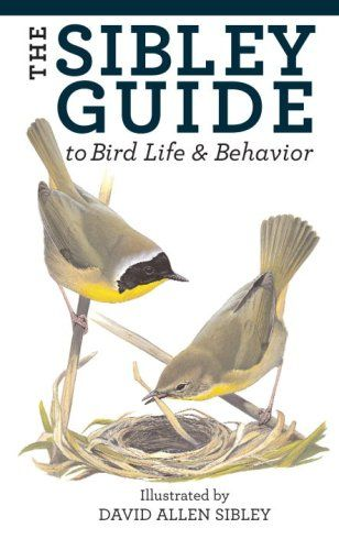 The Sibley Guide to Bird Life and Behavior by David Allen Sibley http://smile.amazon.com/dp/1400043867/ref=cm_sw_r_pi_dp_TVySvb107P8KZ