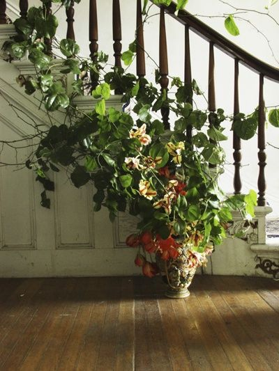 17 best images about banister decorating on pinterest corsage and boutonniere staircases and. Black Bedroom Furniture Sets. Home Design Ideas