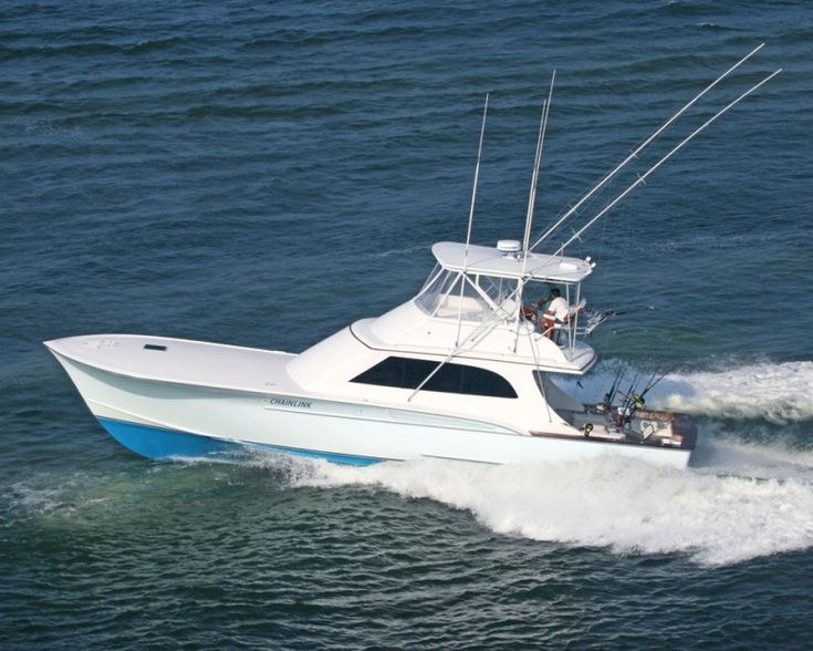717 best images about sport fish on pinterest fishing for Deep sea fishing boat for sale