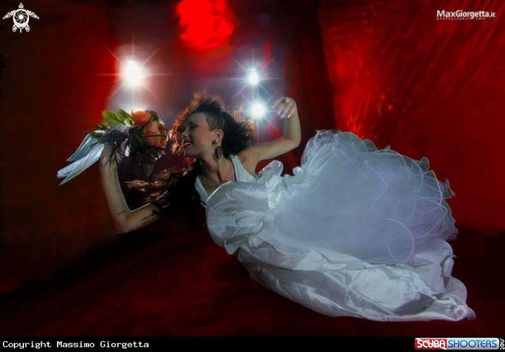 Underwater bride in Y-40 The Deep Joy - Montegrotto Terme - Italy