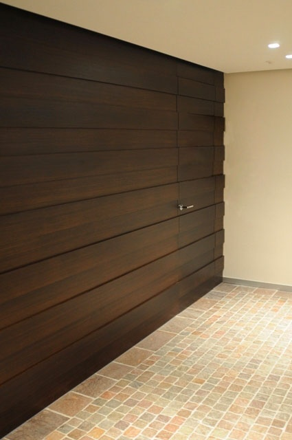 Walnut wood cladding with flush door.