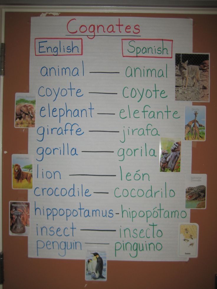 Cognates help with vocabulary development.@Mary Wallis