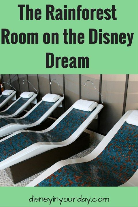 The Rainforest room on the Disney Dream cruise ship - if you go to the spa, you can buy a rainforest room pass.  This gives you access to an amazing place with heated loungers, hot tubs, scented showers, and saunas!