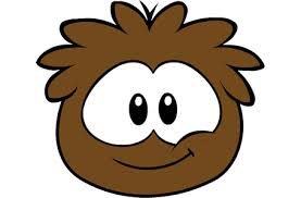 The brown puffle is very intelligent and can be bought from the pet store for members only.