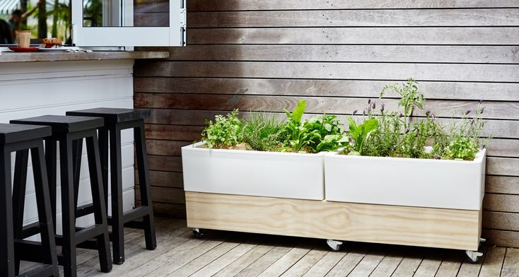 The Glowpear® Mobile Planter is the ideal solution for Cafes and  Restaurants…