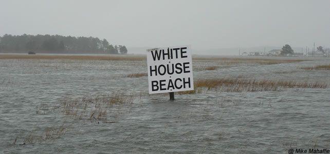 Donald+Trump,+un+climatosceptique+élu+à+la+tête+de+la+Maison+Blanche